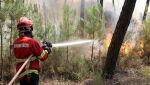 W dystrykcie Castelo Branco spłonęło ponad dziewięć tysięcy hektarów lasu (PAP/EPA/ANTIONIO JOSE)