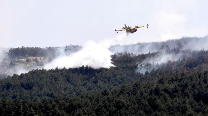 Dwa wybuchy jednego dnia. Hiszpańskie lasy znów u ogniu