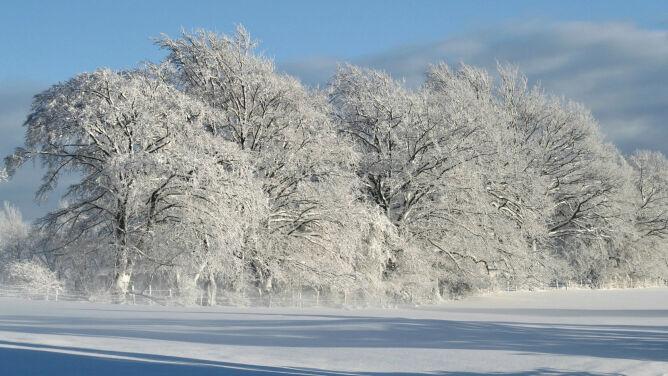 Zima tuż za rogiem. Astronomiczną witamy w piątek, kalendarzową w sobotę